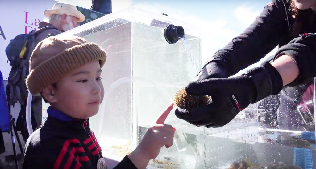 Bringing the Ocean to Eye Level for Inuit